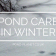 Pond Care In Winter