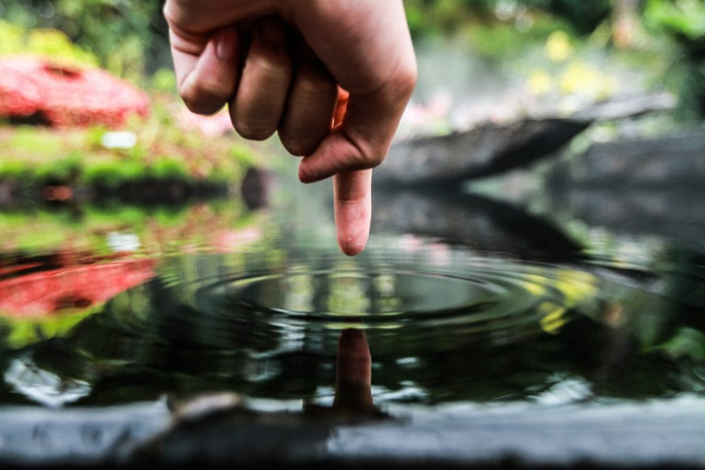 finger pointing to pond water