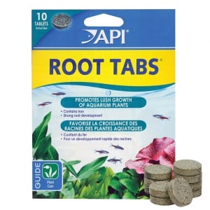 Root Tabs