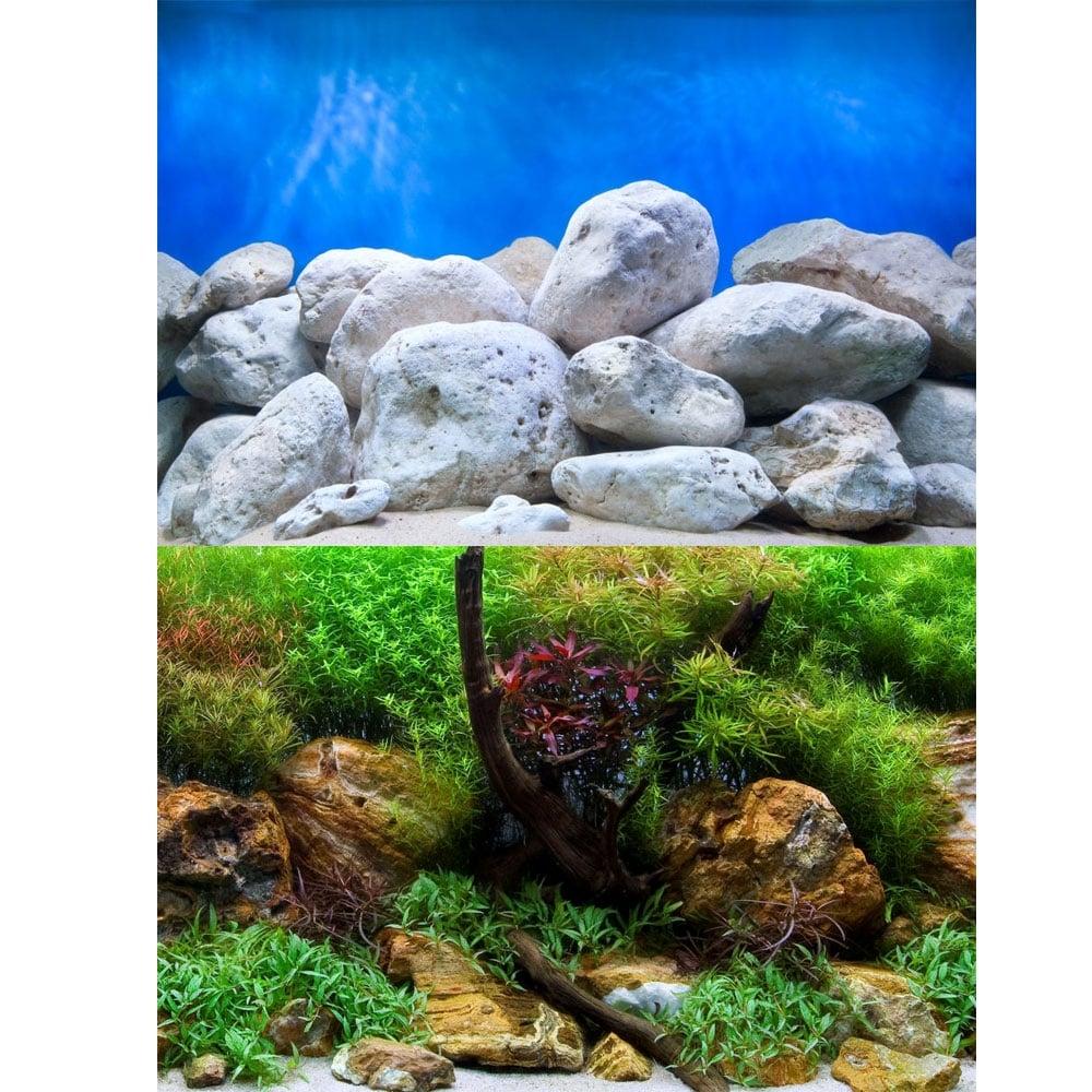 Unduh 58 Background For Aquarium Gratis Terbaru