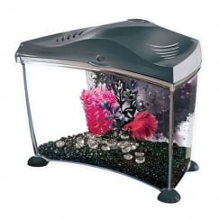 Betta Kit Graphite 7L
