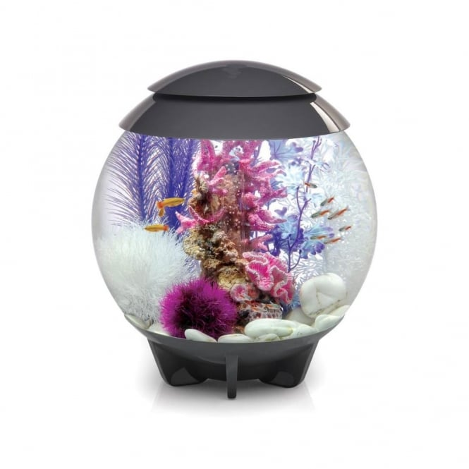 HALO 30 Moonlight LED Aquarium - Grey