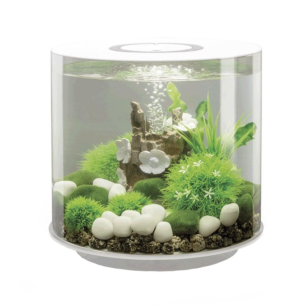 Biorb tube 15 aquarium mcr led white aquarium from for Fish tank vs pond