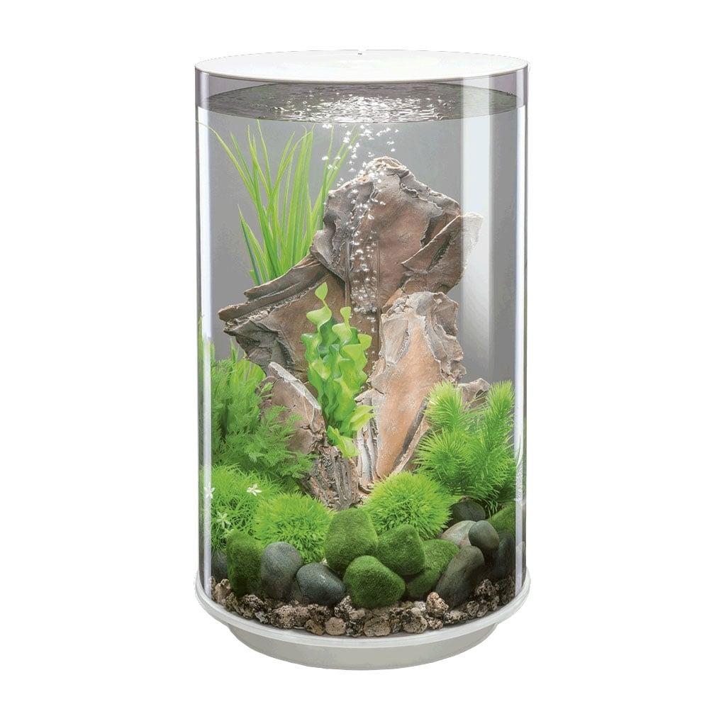 Biorb tube 30 aquarium mcr led white aquarium from for Tube fish tank