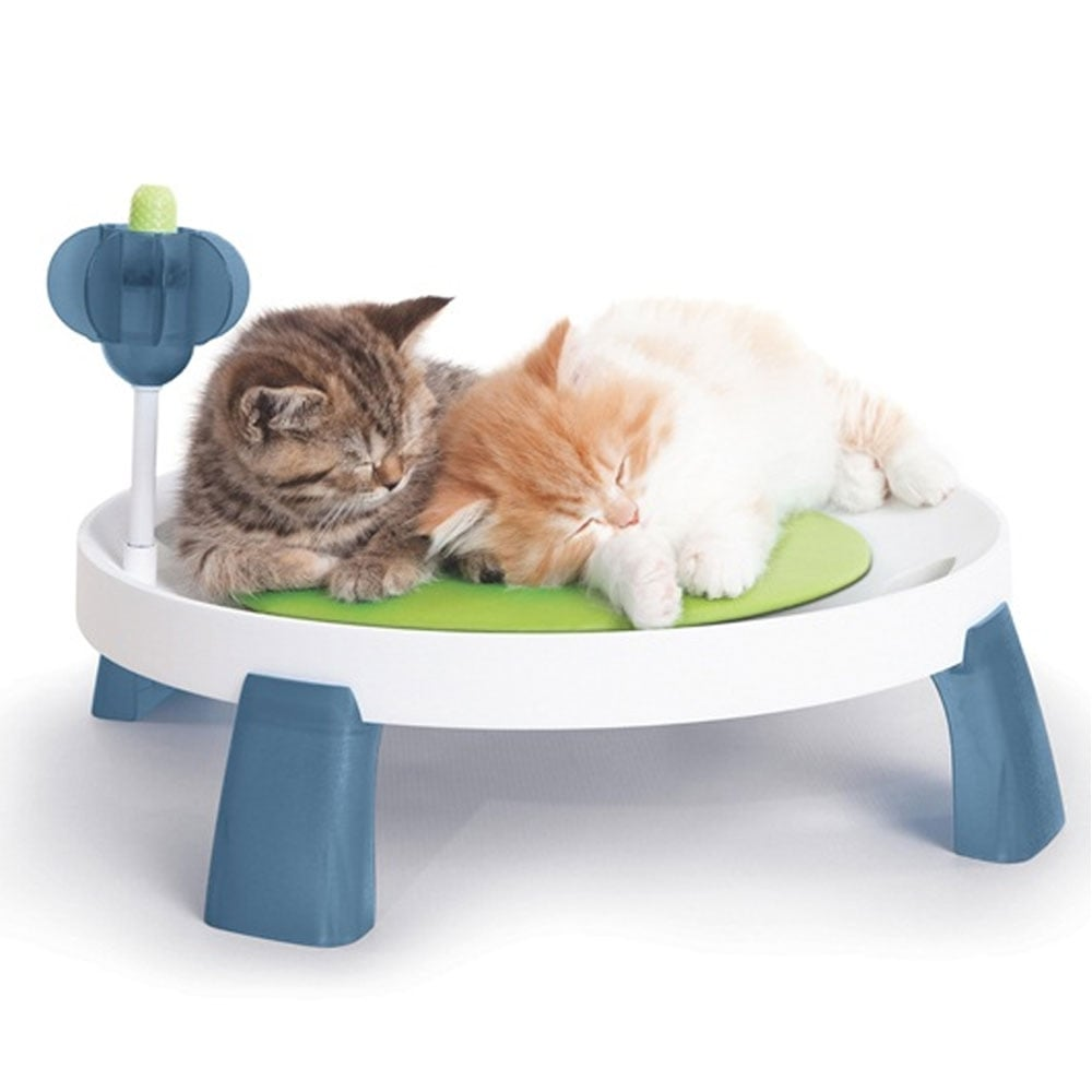 Catit Design Senses Comfort Zone Pet From Pond Planet Ltd Uk