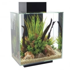 Edge 46L Aquarium Set - Black
