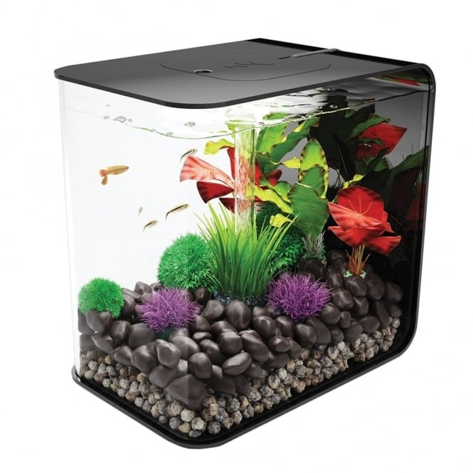 FLOW 15 Aquarium - Black