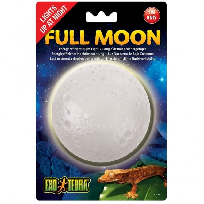 Full Moon Light