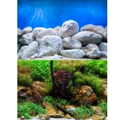 Aquatic Garden / Bright Stone Aquarium Background