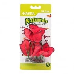Naturals Red Foreground Silk Plant - Small