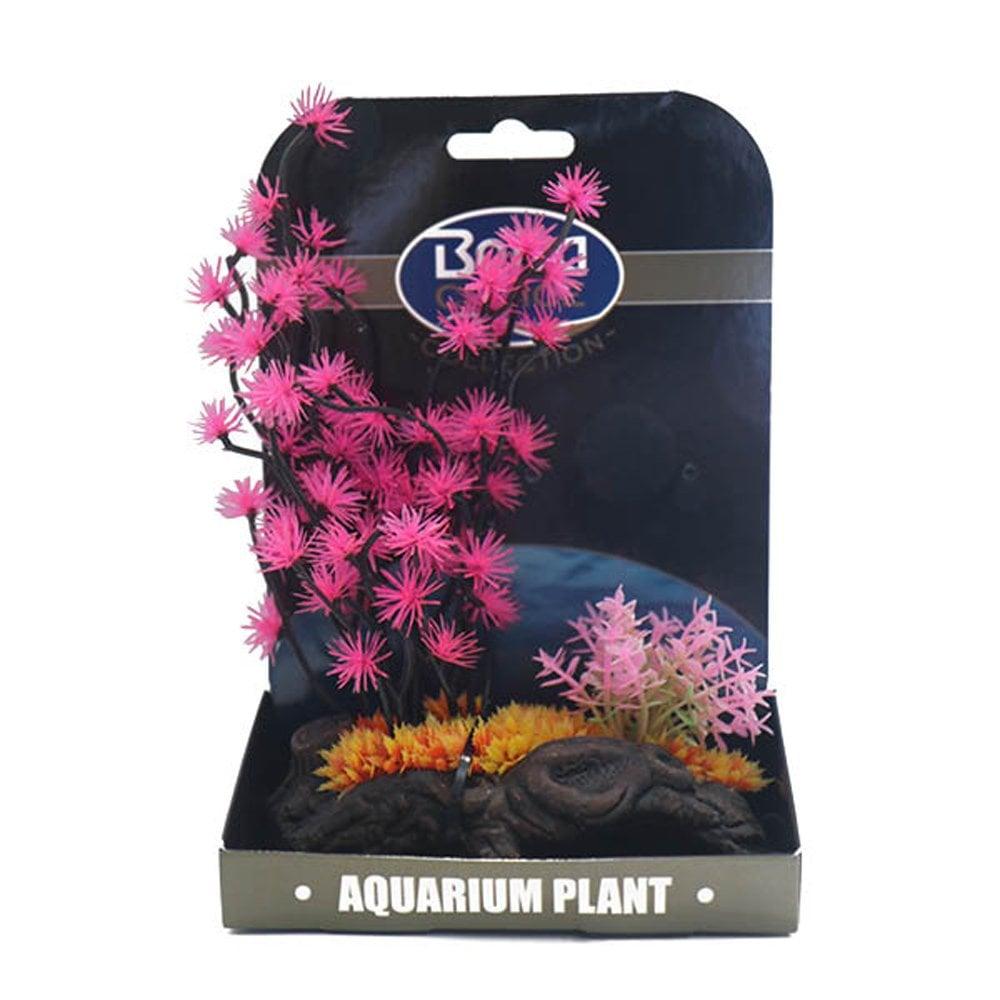Betta Choice Mini Air Gardens Lotus Flower Aquarium From Pond