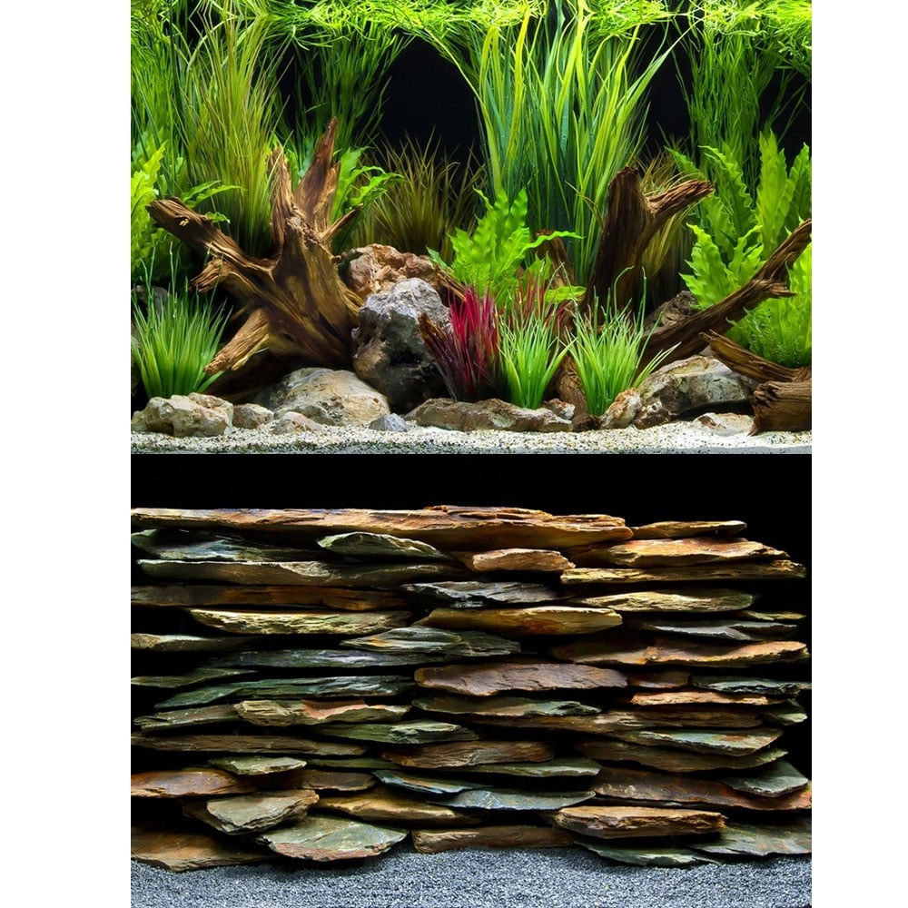 Marina planted oasis slate wall aquarium background for Aquarium decoration uk