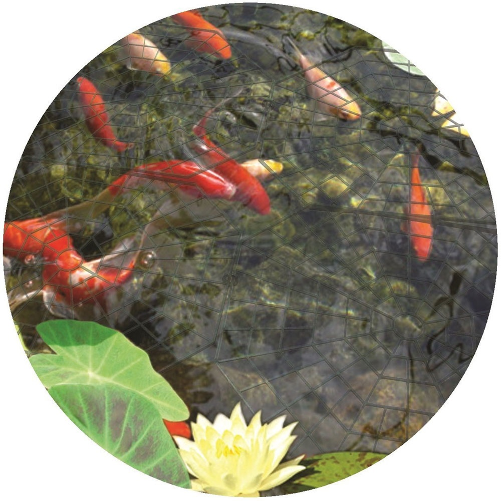 how to protect fish pond from raccoons
