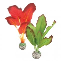 Red/Green Silk Plants - Small