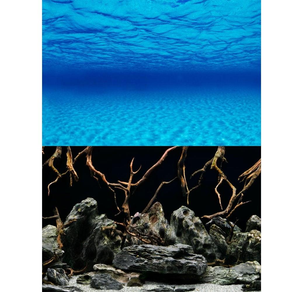 Marina Seascape Natural Mystic Aquarium Background