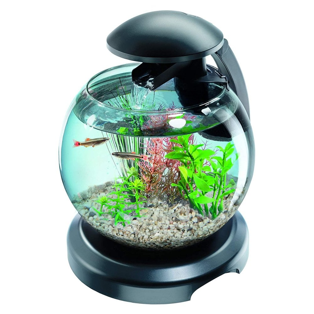 Tetra cascade globe aquarium tetra from pond planet ltd uk for Aquarium boule 20 litres