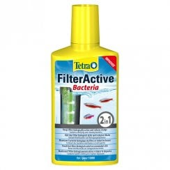 Filter Active